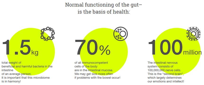 healthy gut pro