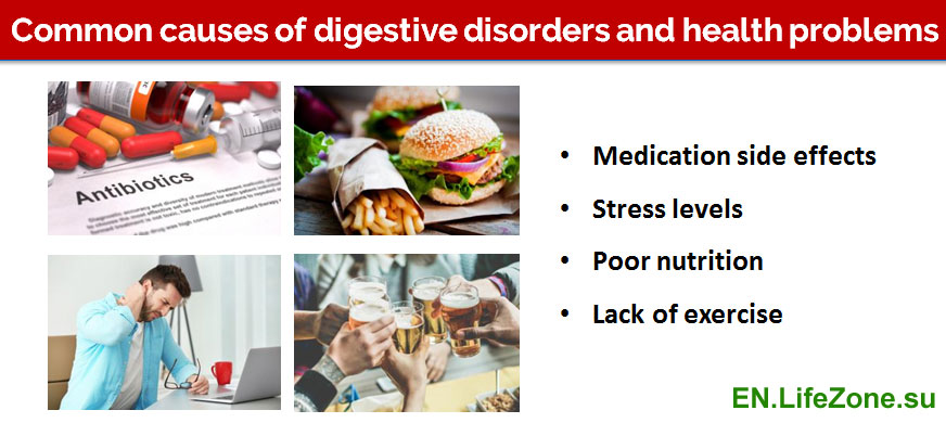 Common-causes-of-digestive-disorders-and-health-problems