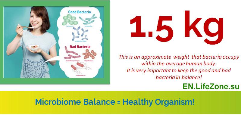healthy_gut-bacteria-balance