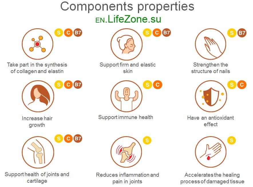 msm_components_properties